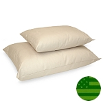 Naturepedic Organic Pillow - King